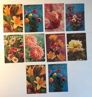 Lotto 10 Cartoline - Fiore  Flower - Cartoline