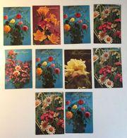 Lotto 10 Cartoline - Fiore  Flower - Cartes Postales