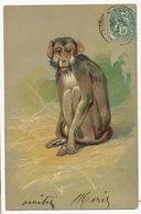 Art Card Monkey Singe Gaufrée Embossed - Singes