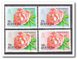 Bermuda 1993, Postfris MNH, Flowers, Roses - Bermuda