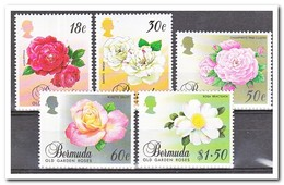 Bermuda 1989, Postfris MNH, Flowers, Roses - Bermuda