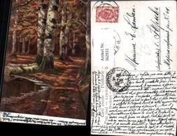 562931,Künstler Ak Birken Birke Wald Bäume Baum - Botanik