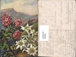 562955,Künstler Ak Edelweiß Alpenrose Bergkulisse Blume Blumen - Botanik