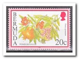 Bermuda 1998, Postfris MNH, Fruit - Bermuda