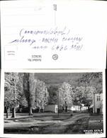 563622,Foto Ak Niska Banja Ansicht Strasse Park 1941 - Serbien