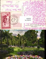 563638,Monte Carlo Jardins Du Casino Park Garten Monaco - Ohne Zuordnung