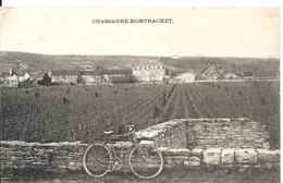 CHASSAGNE-MONTRACHET. VUE GENERALE - Autres Communes