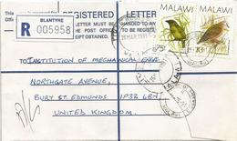 Malawi 1991 Blantyre Green Barbet Cinnamon Dove Registered Cover - Malawi (1964-...)