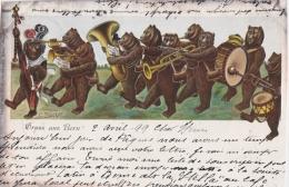 Bp - Cpa Gruss Aus BERN (écrite En 1899) (illustrée Bucher, Ours Formant Un Orchestre) - BE Berne