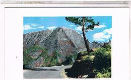 LA REUNION   CILAOS GRAND  BERNARD CPSM 9X14     RE05 - La Réunion
