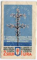 LIBRETTO COMPLETO 2 CAMPAGNA NAZIONALE PER IL FRANCOBOLLO CHIUDILETTERA ANTITUBERCOLARE ANNO 1932 - Cinderellas