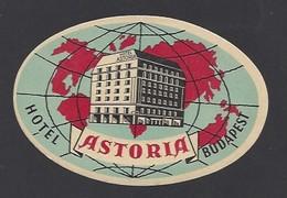 étiquette Valise  -  Hôtel Astoria à Budapest  Hongrie - Hotel Labels