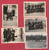 Groupe De Gendarmes En Uniforme - 5 Photos - 1946 - Police - Gendarmerie