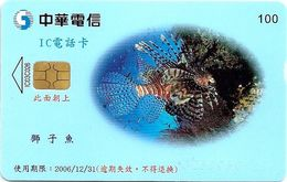Taiwan - Chunghwa Telecom - Lion Fish - Chip, 100U, 31.12.2006, 200.000ex, Used - Taiwan (Formose)