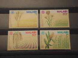 MALAWI - 1981 AGRICOLTURA  4 VALORI - NUOVI(++) - Malawi (1964-...)