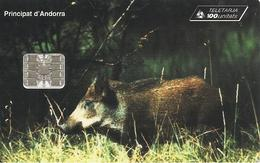 CARTE-PUCE-ANDORRE-100U-AND 58-SC7-10/96-SANGLIER-Reste 41U-TBE - Andorra