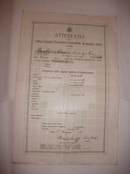 ATTESTATO CIVICA SCUOLA ELEMENTARE FEMMINILE DI QUATTRO CLASSI DI FIUME ( RIJEKA REKA ) 1919 - Diplomi E Pagelle