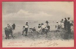 Wenduine / Wenduyne - Sur La Plage ... Geanimeerd - Albert Sugg à Gand -1903 ( Verso Zien ) - Wenduine