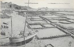Ostréiculture: Cancale, Les Parcs Aux Huîtres, Barque - Carte HLM N° 728 - Fishing