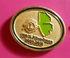 PIN * Lions - Associations