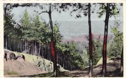 Mont De L'enclus, Vue Du Trou De L'enfer (pk45811) - Mont-de-l'Enclus