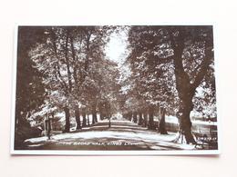 The BROAD WALK, KING'S LYNN ( 214272.JV ) Anno 19?? ( Voir Photo Svp ) ! - Angleterre