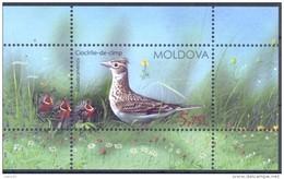 2015. Moldova, Birds Of Moldova, S/s, Mint/** - Moldavia