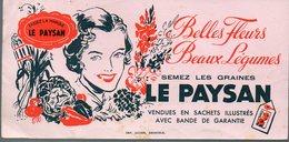 BUVARD Graines LE PAYSAN  (PPP8500) - Farm