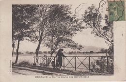 CPA Cogolin - Sur La Route Des Garcinières (avec Petite Animation) - Cogolin