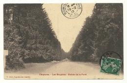 Chaource - Les Bruyères - Entrée De La Foret - 33 - Chaource