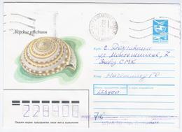 Latvia USSR 1987 Fauna Marine Life Sink Shell, Canceled In Daugavpils - 1923-1991 URSS
