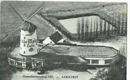 Aarschot  Witte Molen   Moulin - Aarschot