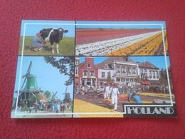 POSTAL POST CARD POSTCARD CARTE POSTALE HOLLAND NEDERLAND HOLANDA PAISES BAJOS DIVERSAS VISTAS VER FOTO/S Y DESCRIPCIÓN - Holanda