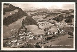 Carte P ( Brunnadern ) - SG St. Gall