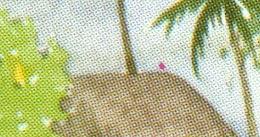 PF25a LES PECHEURS *** Point Rouge Sur Le Toit *** TTBE *** (A3-P16) - French Polynesia