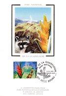 """FRANCE 1997 """" RACOON / PARC DE LA GUADELOUPE """" Sur Carte Maximum En Soie. N° YT 3055. Parfait état CM - Briefmarken"""