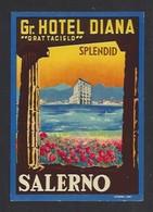 étiquette Valise  -  Hôtel Diana à Salerno  (Salerne)  Italie - Hotel Labels