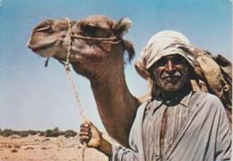(TU135) SUD TUNISIEN. CHAMELIER - Túnez