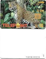 @+ TC Du Perou - Telepoint - Jaguar - Ref: PER-TE-064 - Peru