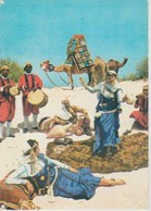 (TU144) BALLET LAGHBABI - Túnez