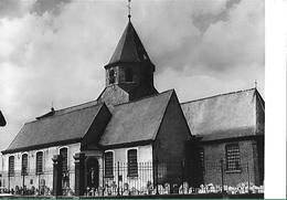 ! - Belgique - Ouwegem (Zingem) - Kerk Sint-Jan-Baptist - Zingem