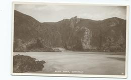 Guernsey   Postcard   . Unused Rp Petit Port Pelham Postcard - Guernsey