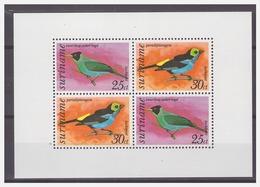 Surinam / Suriname 1977 Vogels Birds Oiseau S/S MNH - Suriname