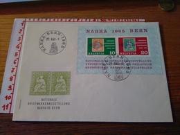 144285 SVIZZERA NATIONALE BRIEFMARKENAUSSTELLUNG NABRA 65 BERN - Svizzera