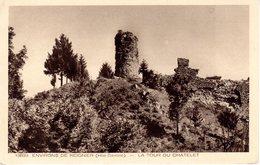 Environs De Reignier - La Tour Du Chatelet - Non écrite - Autres Communes