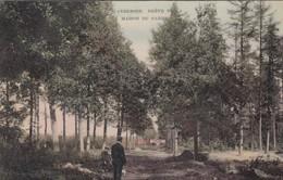 Scherpenheuvel -Averbode - Dreef - Scherpenheuvel-Zichem