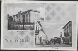 SALUTI DA... CESOLE -  FORMATO PICCOLO - VIAGGIATA 1950 FRANCOBOLLO ASPORTATO - Souvenir De...