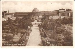 Bruxelles - CPA - Brussel - Le Jardin Botanique - Bossen, Parken, Tuinen