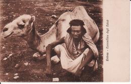 Afr. 98Eritrea, Cammelliere Degli Habad - Eritrea