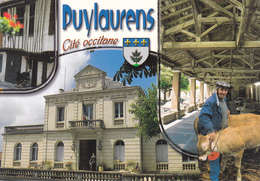 81  PUYLAURENS - CITE OCCITANE - MAIRIE / MARCHE AUX VEAUX FERMIERS / BLASON / MULTIVUES - Puylaurens